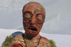 Zombie-Close-up-3-Charlotte-Price-1904049-AAD3104