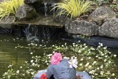Hollie-Milne-habitat-waterfall
